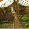 undergroundgreenhouse